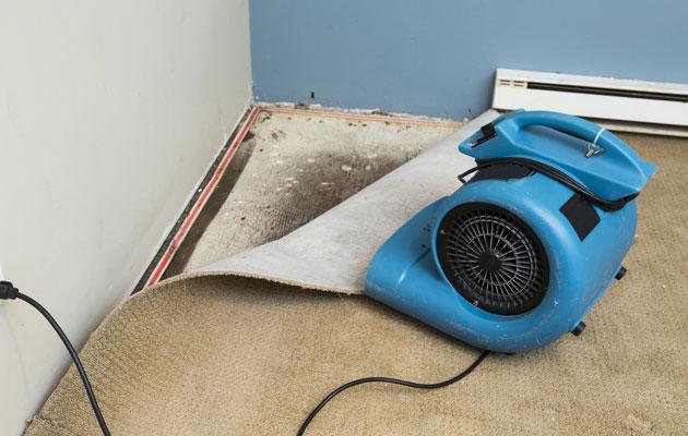 Kuivattelu on tärkeää, kun kosteusvaurio löydetään.