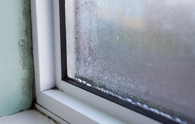 Kosteusvaurio voi syntyä ikkunan viereen.