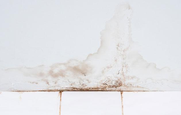 Ehkäise home ja tunnista kosteusvaurio