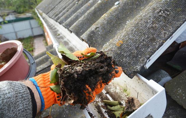 Rännien putsaaminen ehkäisee vesivahinkoja.