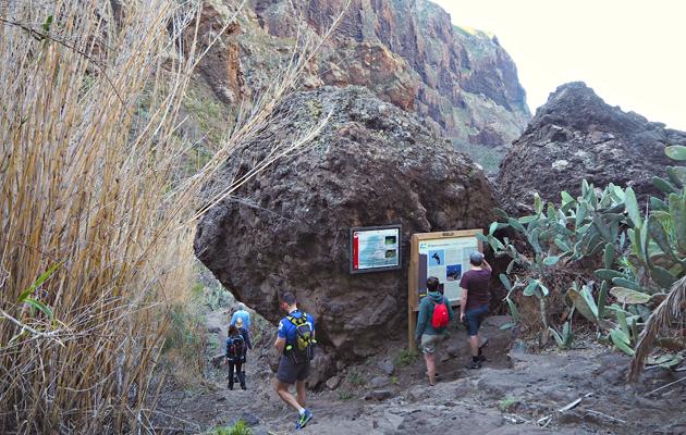 Kuva - Teneriffa on patikoijan paratiisi – 3 vinkkiä vaeltajalle