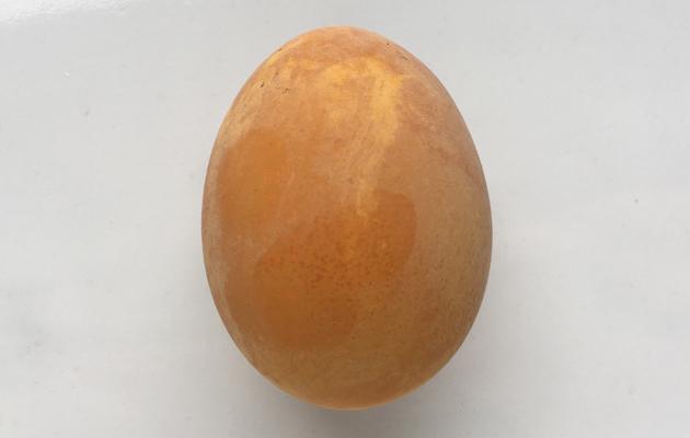 kurkumalla värjätty kananmuna