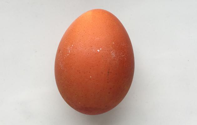 Kananmunien värjääminen sipulilla.