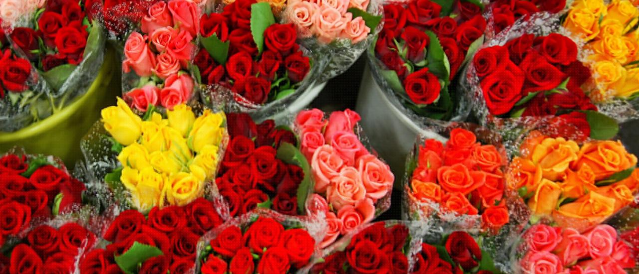 Kuva - Kukat kertovat tunteesi – tämä kukka on aina varma valinta!