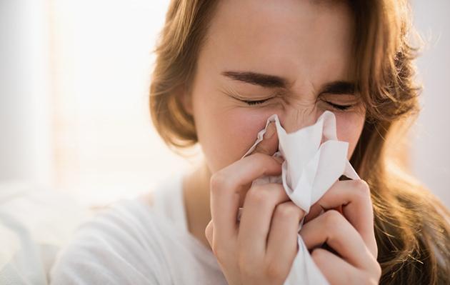 siitepöly, allergia, siitepölyallergia, hoito, allerginen nuha, oireet, helpotusta