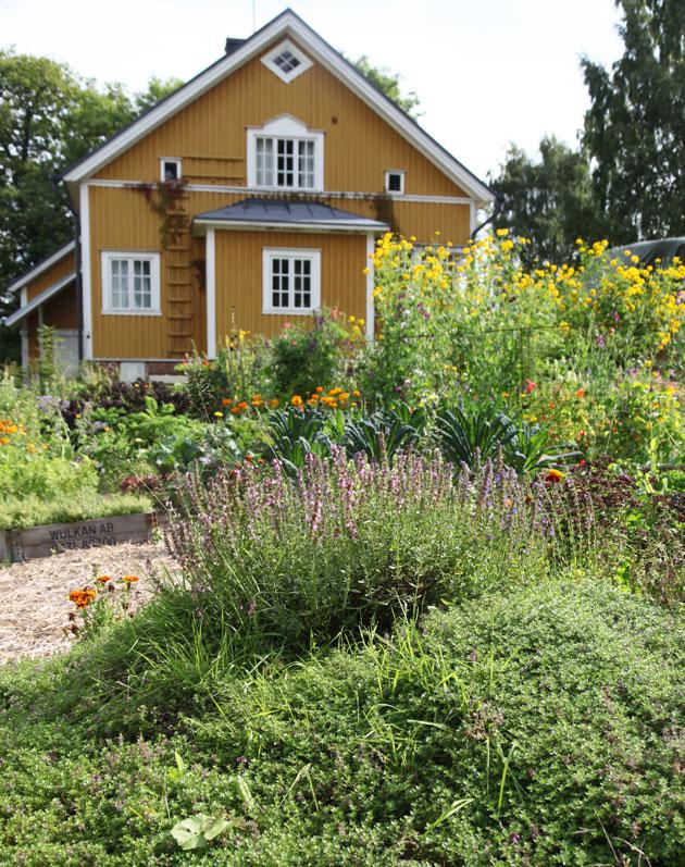 keltaisen talon puutarha