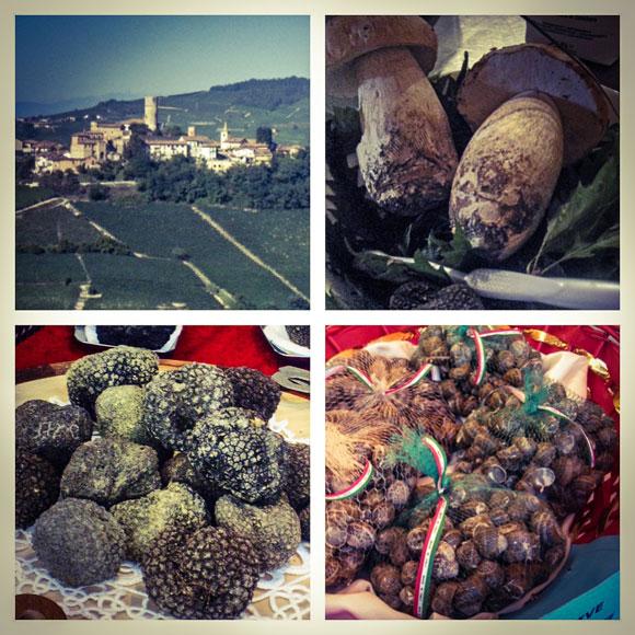 Himahella_piemonte4