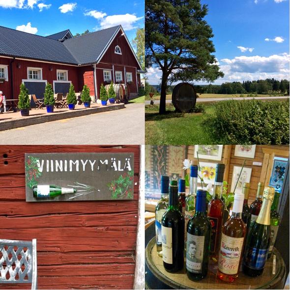 Voitokas Rönnvikin viinitila