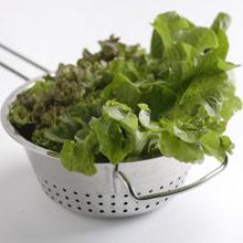 Kuva - Salaatin raikkautta