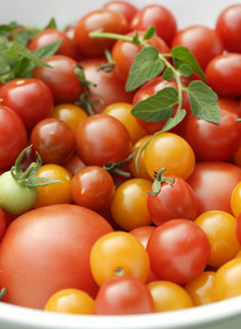 Kuva - Tomaatti