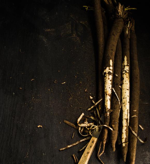 mustajuuret