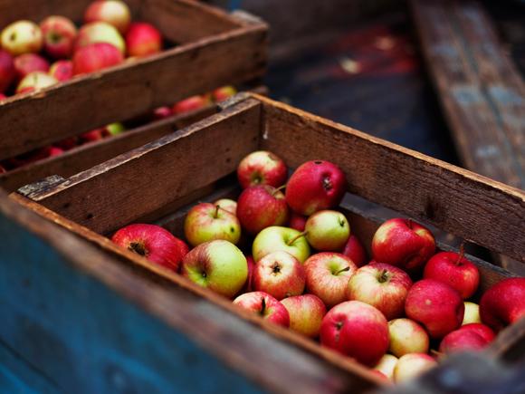 Kuva - Alkusyksyn omenaherkut