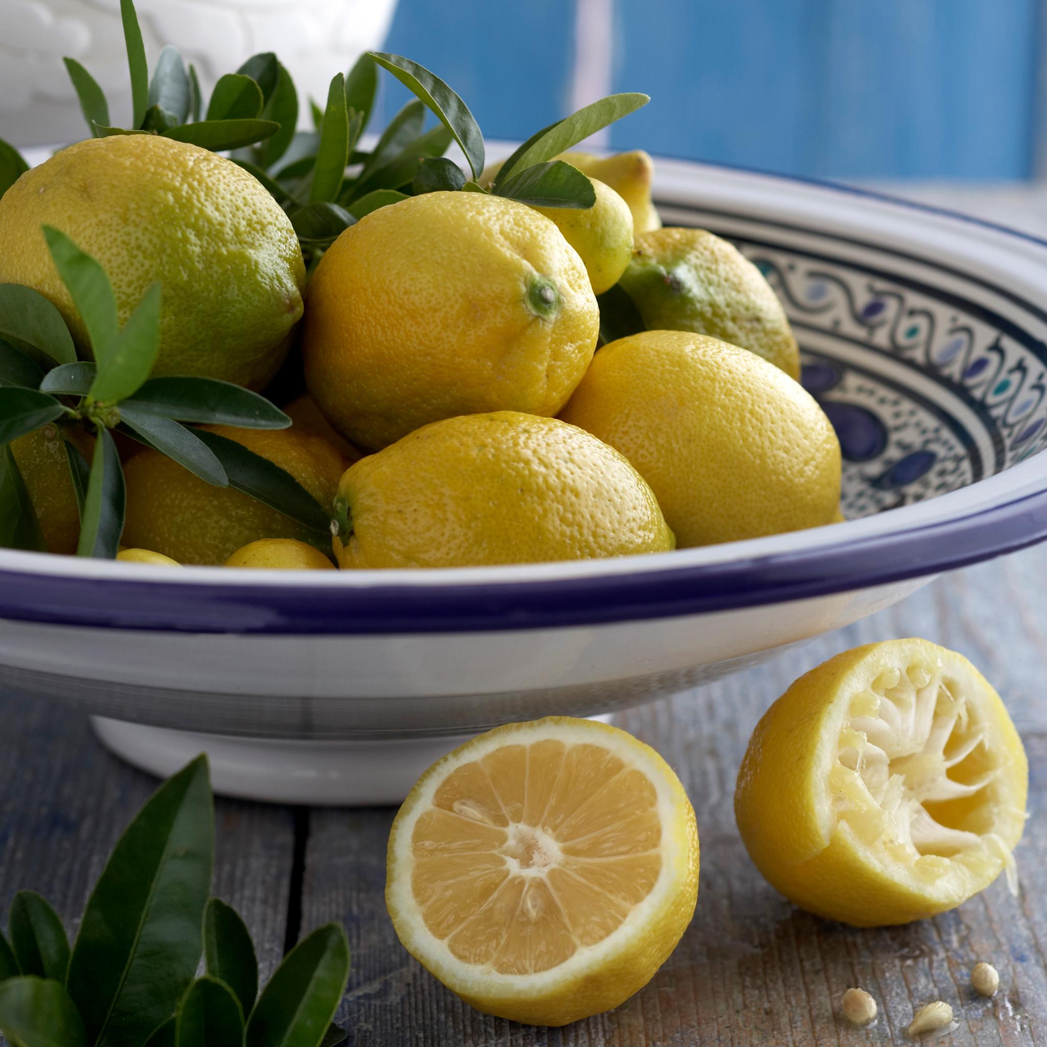 Kuva - Sitruunasta raikkautta – reseptit alkupaloista jälkiruokiin